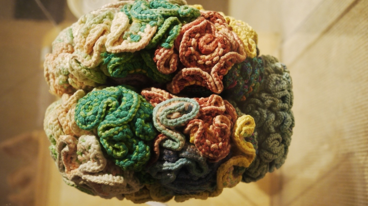 Knitted Brain at the Museum of Science